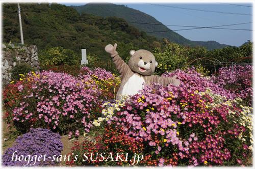 菊花園とかわうそ