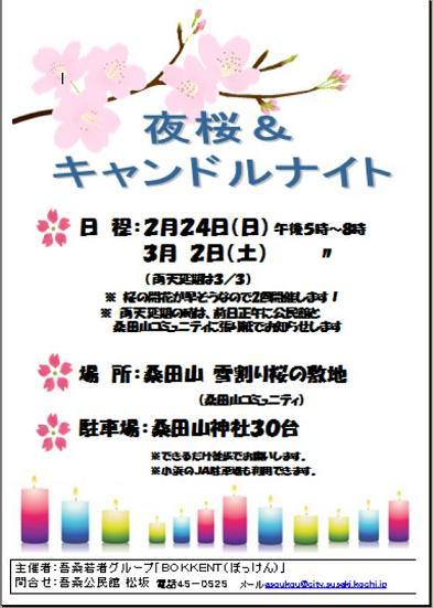 20130222雪割桜8