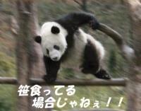 20130225鯛伊食祭7