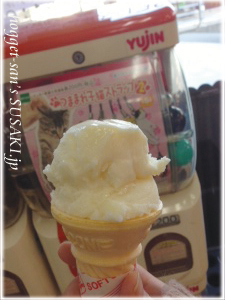 20130303ぢちちアイス2