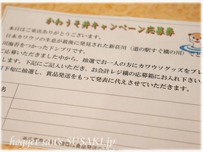 20130320かわうそ丼7