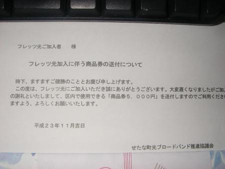 IMGP4218_20111126000211.jpg