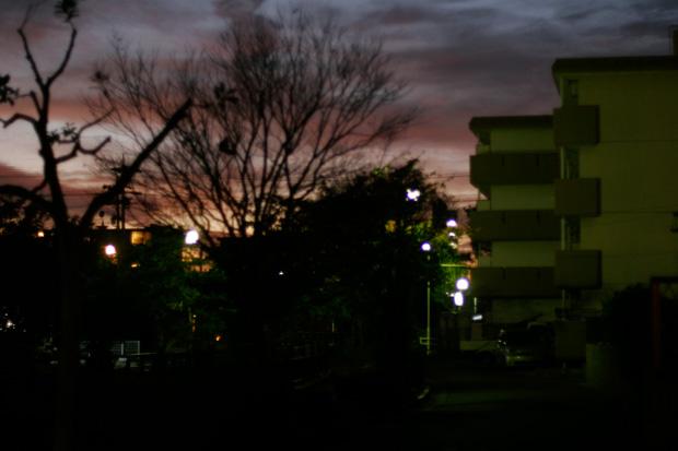 20111109.jpg
