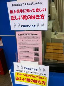 大阪市旭区しおかわ鍼灸整骨院 交通事故・美容鍼灸もおまかせください
