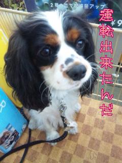 blog-11112701.jpg