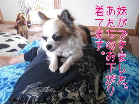 Aブログ071501