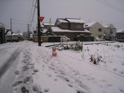momo 2011 12.17 1