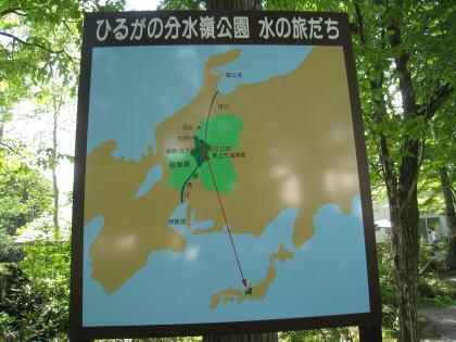 momo9007.jpg