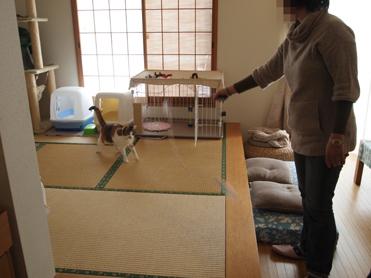 1202神奈川県民会12