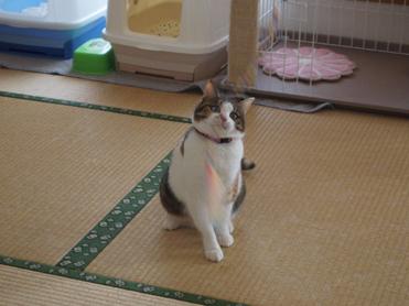 1202神奈川県民会18