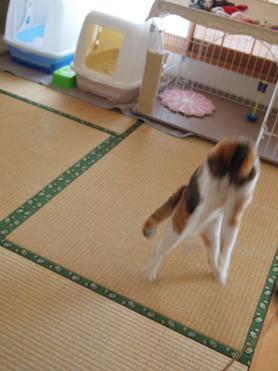 1202神奈川県民会16
