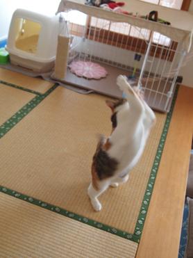 1202神奈川県民会17