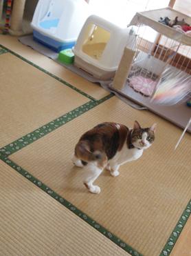 1202神奈川県民会15