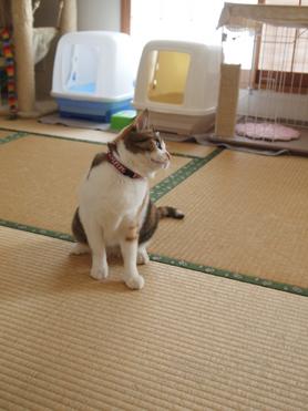 1202神奈川県民会23