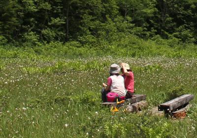 2010 07 08 駒止湿原 116