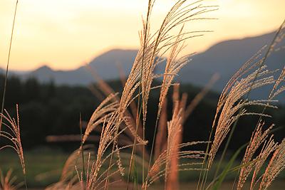 今日の夕焼け 20101002 02