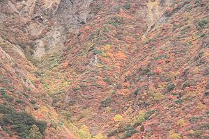 2010 10 13 茶臼岳 006