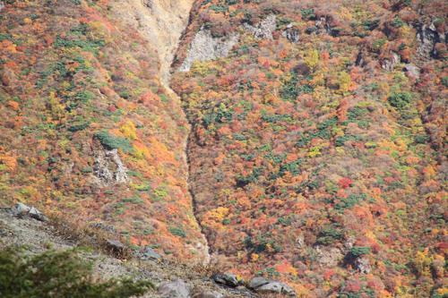 2010 10 13 茶臼岳 037