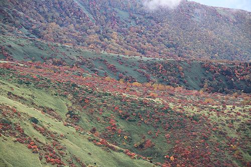 2010 10 13 茶臼岳 077