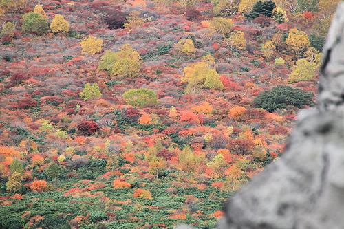 2010 10 13 茶臼岳 143