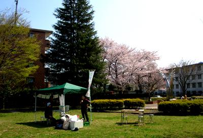 清瀬市竹丘緑地公園