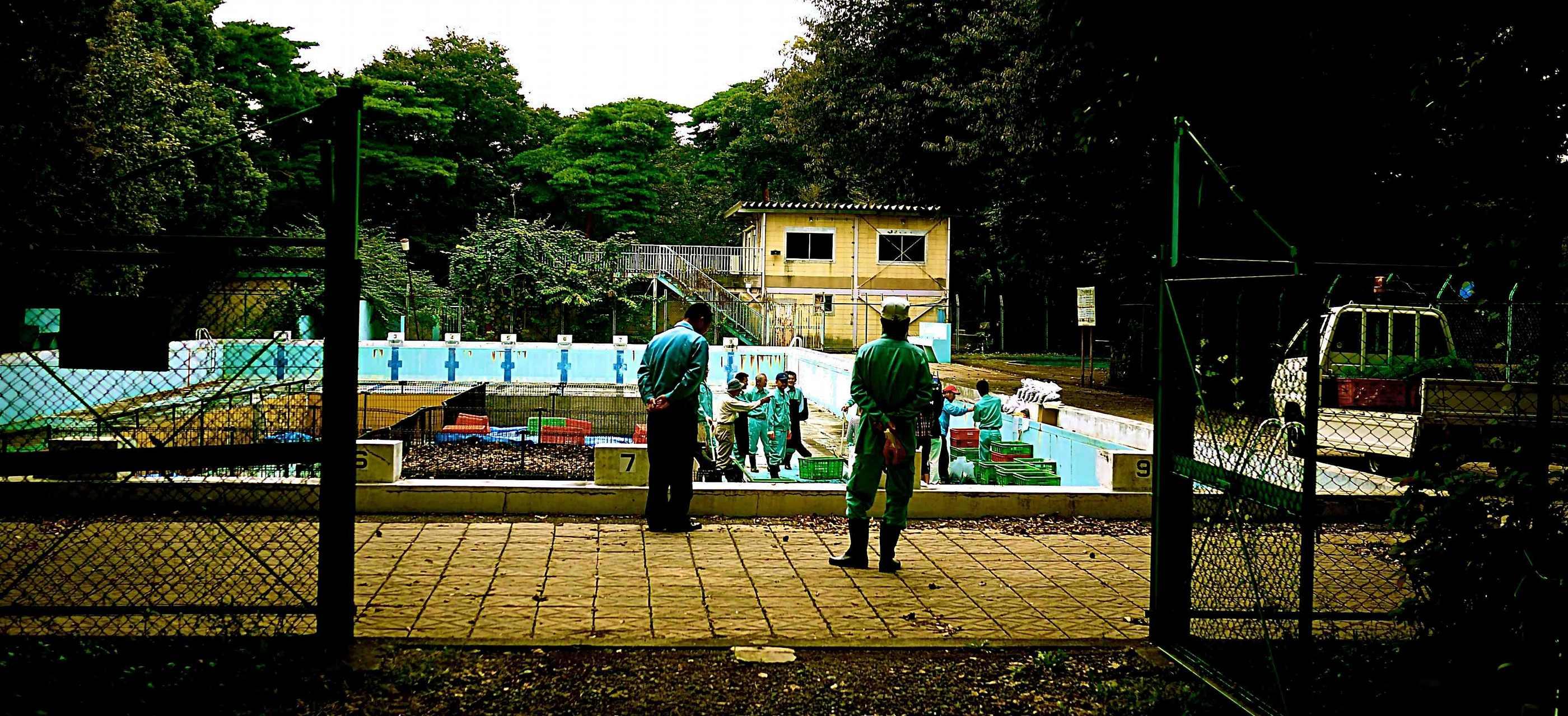 清瀬市中央公園腐葉土作り1