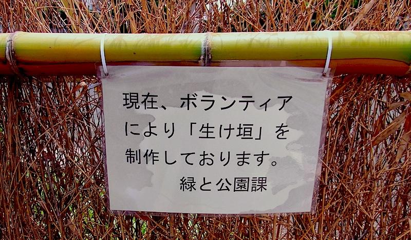 清瀬二保公園笹垣01