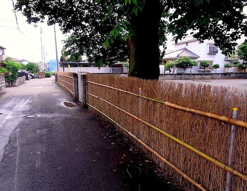 清瀬二保公園笹垣03