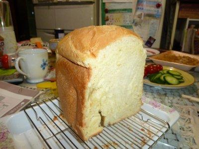 テスト用パン