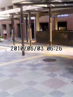 20100603緑地公園