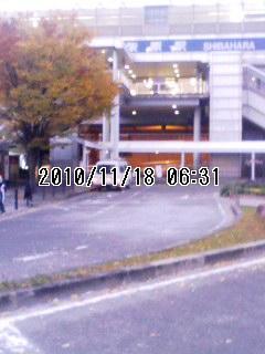 20101118柴原