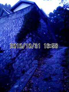 101031_1658~001