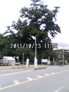 111023_1152~001