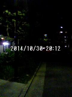 141030_2012~001