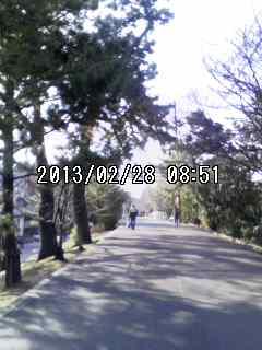 moblog_7f61ff1a.jpg