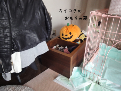 toy22.jpg