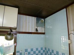 P1030398_convert_20120917164639.jpg