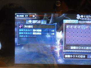 DSCN2915.jpg
