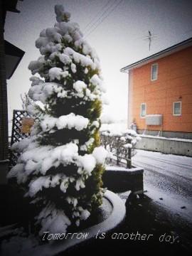2010.12.16 雪景色