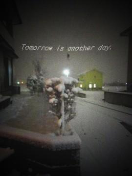 2010.12.24 ホワイトクリスマス