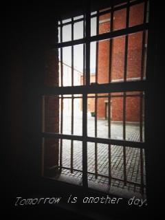 文翔館 窓からの風景 中庭