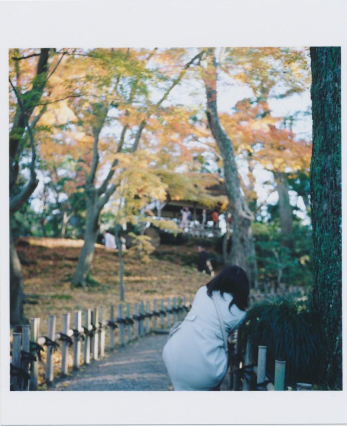 kenroku-en_芭蕉の小径