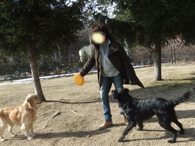 snap_huzoroi06_2007248315.jpg