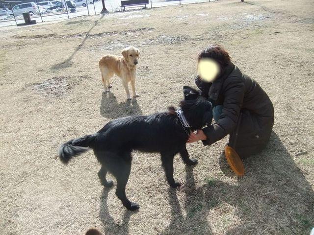 snap_huzoroi06_2007248362.jpg
