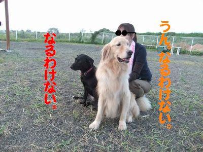 huzoroi06