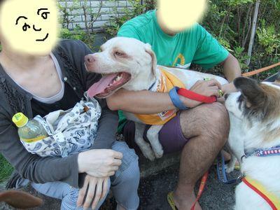 snap_huzoroi06_201092205445.jpg