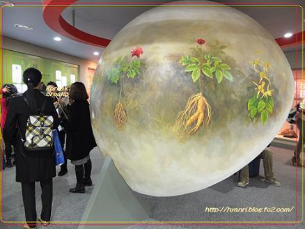 11-09大邸 薬令市韓医薬博物館3