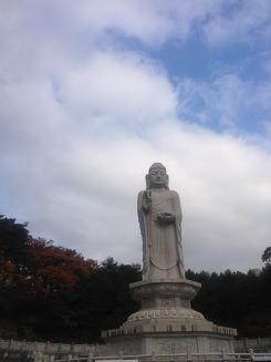 11-10 桐華寺10