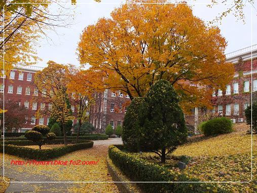 11-10 啓明大学3