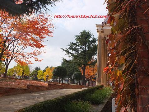 11-10 啓明大学9